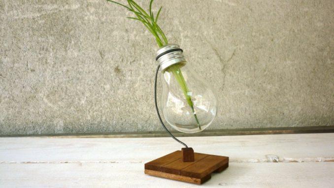 Une ampoule avec plante à l'intérieur